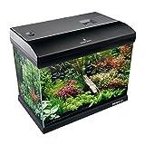 Aquarium System, Mirabello 70 Acquario 61x31x48h cm, 75 Litri, con Filtro, Luce con Timer e Accessori