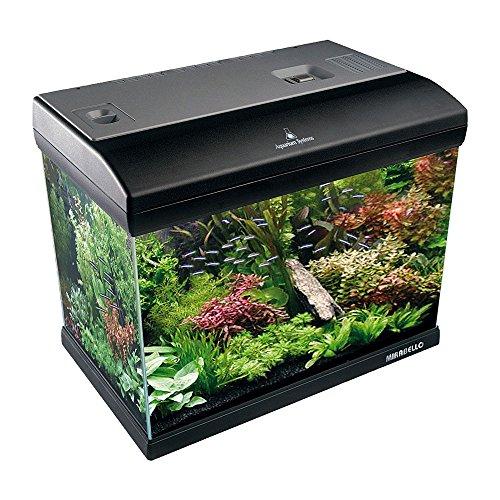 Aquarium System, Mirabello 70Aquarium 61x 31x 48H cm, 75Liter, mit Filter, Licht und Zubehör