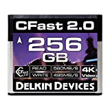 Delkin Devices 256GB Cinema CFast 2.0 Memory Card (DDCFST560256)
