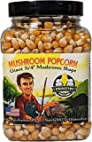 Mushroom Popcorn Kernels by Princeton Popcorn – Farm Grown, Non GMO, Gluten Free UnPopped, Ball Shaped, Old Fashion Popcorn – Pops Extra Large, Popping Corn for Air Popper & Stovetop 16oz