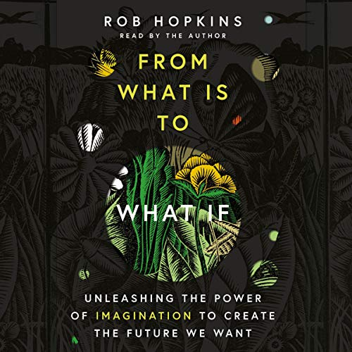 From What Is to What If audiobook cover art