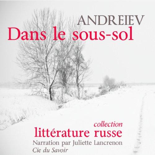 Dans le sous-sol audiobook cover art