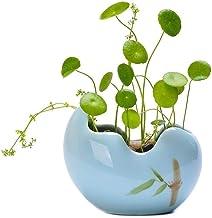 LJBH Creative Ceramic Hydroponic Pots, Office Desktop Flower Pots, Green Narcissus Flower Pots, Exquisite workmanship, sturdy and durable (Color : Blue, Size : Small)