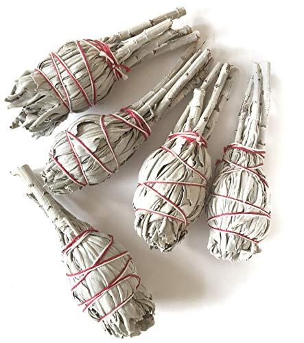 farbenwald Weißer Salbei, 5 Bündel ~11cm, aus Kalifornien, Räucherware, White sage, Smudge Sticks