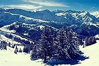 刺繍キットクロスステッチ刺しゅうキット初心者 冬の山の風景11CTスターターキットクラフトキットギフトホームデコレーションウォールデコレーション40x50cm