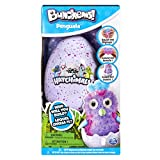 Bunchems Hatchimals Kit (BIZAK 61926831)