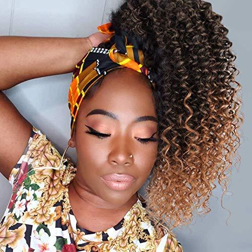 ColorfulPanda 16Zoll/41cm Afro Dutt Kinky Curly Pferdeschwanz haarteil Clip In Haar extensions mit Kordelzug Haarverlängerunge extension kurz Perücke Natürliches Lockige...