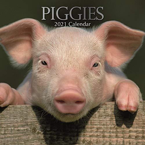 2021 Wandkalender - Piggies Kalender, 30 x 30 Zentimeter Monatsansicht, 16-Monat, Tiere Thema, Enthalten 180 Aufkleber auf Englisch