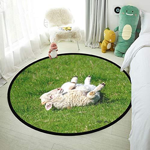SunFay - Alfombra redonda para bebé, antideslizante, de lujo, para decoración del hogar, cuarto de bebé, dormitorio y sala de estar, lindas ovejas durmiendo, 31,5 pulgadas