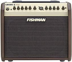 Fishman Loudbox Mini 60W Acoustic Instrument Amplifier