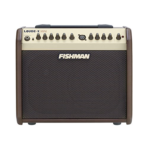 Fishman Loudbox Mini 60W Acoustic Instrument Amplifier