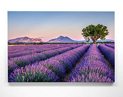 Panorama Leinwand Provence - als 150x50cm großes XXL Leinwandbild. Wandbild als Hintergrund und Deko für Wohnzimmer & Schlafzimmer. Aufgespannt auf Holzrahmen