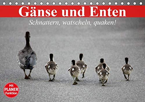 Gänse und Enten. Schnattern, watscheln, quaken! (Tischkalender 2021 DIN A5 quer)