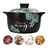 AHUA Ceramic Stockpot, Stovetop Ceramic Cookware, Soup Pot Stew Pan Casserole Clay Pot Earthen Pot Healthy Stew Pot, Green Leaf Pattern Ceramic Round Black Dish with White Lid Heat-Resistant