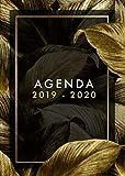 Agenda 2019-2020: Planificador Agenda Semanal Mensual Diario Para Disparar la Productividad, Motivación y Felicidad, julio 2019 a diciembre 2020, flores negras ,
