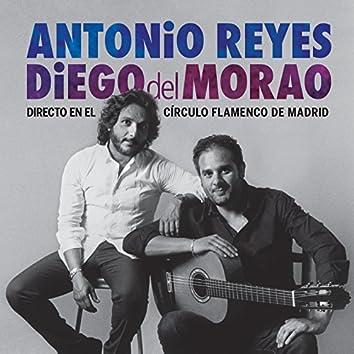 Directo en el Círculo Flamenco de Madrid