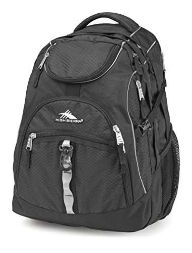High Sierra Access Laptop Backpack, Black, 20 x 15 x 9.5-Inch