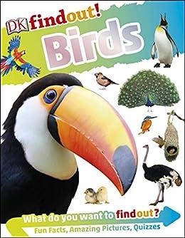 DKfindout! Birds by [DK]