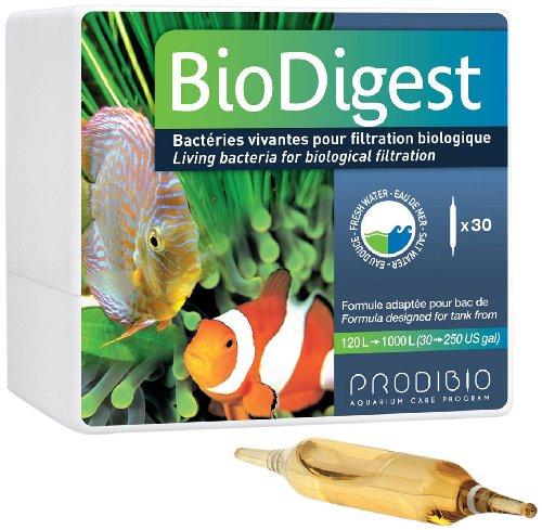 Prodibio bio digest L00105 - Bacterias vivas para filtración biológica , Caja de 30 ampollas