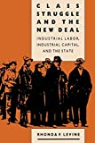 Class Struggle and the New Deal: Industrial Labor, Industrial Capital, and the...