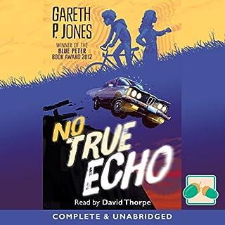 No True Echo cover art