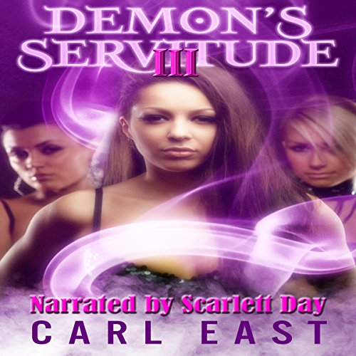 Demon's Servitude 3 audiobook cover art