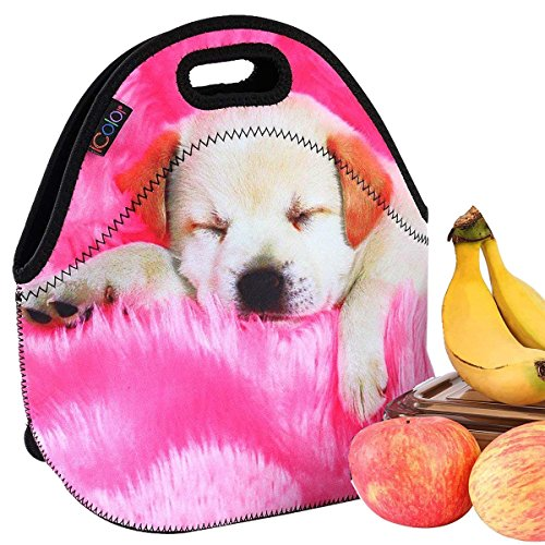 Neoprene Lunch Bag by iColor
