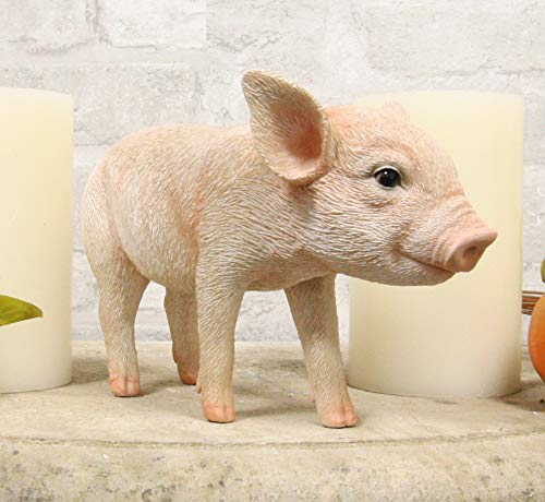 Ebros Adorable Realistic Animal Farm Babe Piglet Pig Statue 8  Long Rustic Country Piggy Pet Porcine Pigs Collectible Figurine
