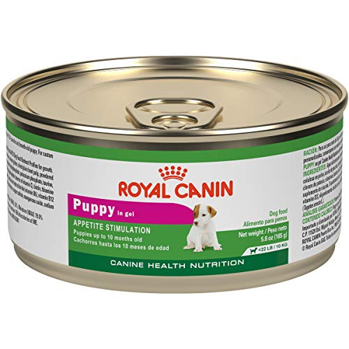 Royal Canin Canine Health Nutrition Puppy In Gel Canned Dog Food, 5.8...