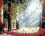 Lcgbw Kit De Pintura Acrílica Bosque Soleado Números para Adultos Y Niños Lienzo para Pintura-40X50 Cm(Sin Marco De Madera)