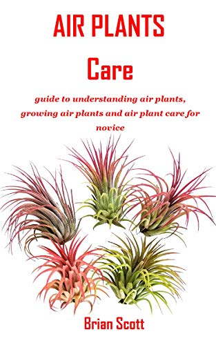AIR PLANTS CARE: guide to understanding air plants, growing air plants and air plant care for novice (English Edition)