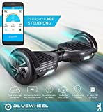 Bluewheel HX310s - 4