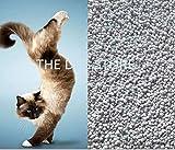 The DDS Store Natural Bentonite Clay Cat Litter (10Kg.)