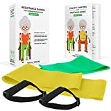 Healthy Seniors Chair Exercise Program with Two Resistance Bands, Handles and Printed Exercise Guide. Ideal for Rehab or Physical Therapy