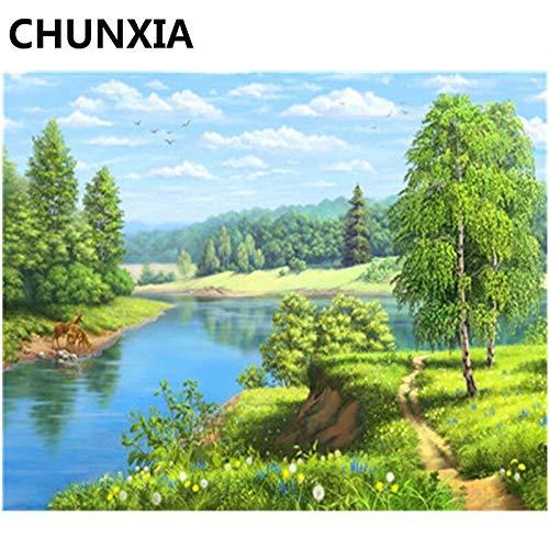 baodanla Sin Marco Primavera y Verano con murales Digitales de Pintura al óleo, la decoración del hogar es única40x60cm