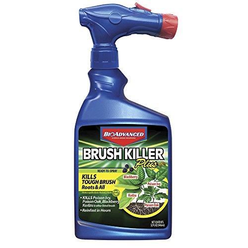 BioAdvanced 704645A Brush Killer Plus, Kills Poison Ivy, Blackberry, Kudzu, 32-Ounce, Ready-To-Spray