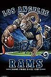 NFL Poster Los Angeles Rams End Zone Größe L: 55,9 x 86,4