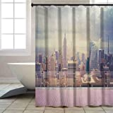 Aishare Store - Cortina de ducha con ganchos, diseño de paisaje de Nueva York, Estados Unidos, desde el techo, apartamento, balcón, fotografía, 182 x 244 cm, cortina de baño con ganchos, color...