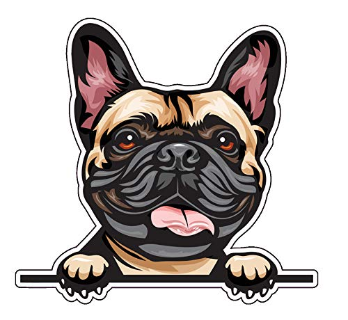 WickedGoodz Smiling French Bulldog Vinyl Decal - Dog Breed Bumper Sticker - for Laptops Tumblers Windows Cars Trucks Walls