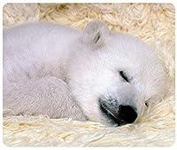 眠っているホッキョクグマの赤ちゃん動物のカスタマイズされた長方形のマウスパッド、マウスパッド