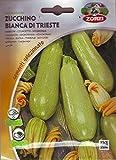 Zucchino Bianca di Trieste (5 bustine di semi)