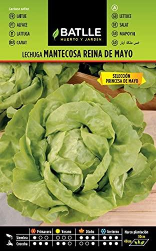 Semillas Hortícolas - Lechuga Reina de Mayo sel. Princesa de Mayo - Batlle