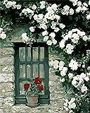 Wcyljrb Lienzo De Pintura Rosa Rosa Adulto Y Niños Lienzo Lienzo Acrílico Artista De Pared Decoración Del Hogar Regalo-16 X 20 Pulgadas (Sin Marco)