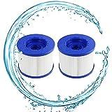 YZHY - Cartucho de filtro de piscina, cartucho de filtro de tornillo para Spa hinchable, 60 mm, cartucho filtrante para muelles de Spa Paresseux, para Aqua...