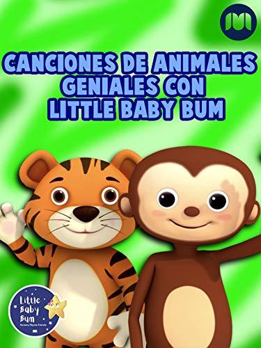Canciones de animales geniales con Little Baby Bum
