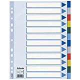LEITZ Plastikregister (1-12), blanko | 5er Bundle Sparpaket | A4 , Universallochung | Beschriftbares Deckblatt