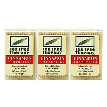 Tea Tree Therapy Toothpicks Cinnamon 100 Count  3-Pack