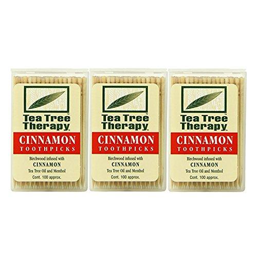 Tea Tree Therapy Toothpicks, Cinnamon, 100 Count (3-Pack)