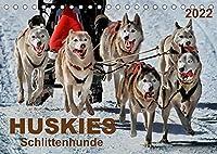 Huskies - Schlittenhunde (Tischkalender 2022 DIN A5 quer): Huskies - freundlich und aufmerksam, mit einem unglaublichen Orientierungssinn. (Monatskalender, 14 Seiten )