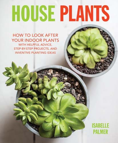 House Plants: How to look after your indoor plants: with helpful advice, step-by-step projects, and inventive planting ideas